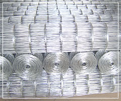 Galvanized After Welded Wire Mesh Tatall Welded Wire